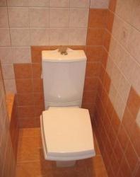 <p><em><strong>Ремонт и отделка туалета: дизайн санузла туалета WC.</strong></em></p>