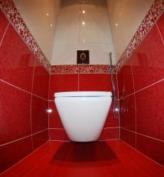 <p><em><strong>Ремонт и отделка туалета: дизайн туалета в красный тонах.</strong></em></p>