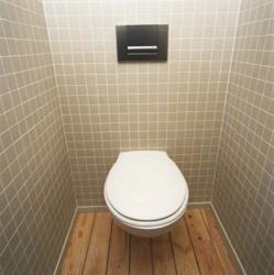 <p><em><strong>Ремонт и отделка туалета: в дизайне туалета учтен теплый пол.</strong></em></p>