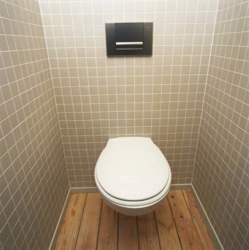 <p><em><strong>Ремонт и отделка туалета: в дизайне туалета&nbsp; учтен теплый пол.</strong></em></p>