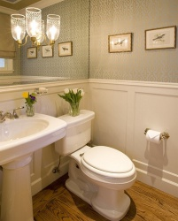 <p><em><strong>Ремонт и отделка туалета: красивый туалет.</strong></em></p>