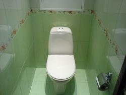 <p><em><strong>Ремонт и отделка туалета: салатовый кафель.</strong></em></p>