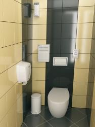 Ремонт и отделка туалета: стильный дизайн туалета WC.