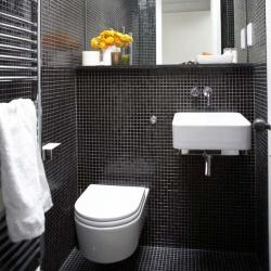 <p><em><strong>Ремонт и отделка туалета: стильный дизайн туалета.</strong></em></p>