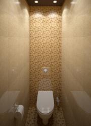 <p><em><strong>Ремонт и отделка туалета: wc дизайн санузла туалета.</strong></em></p>