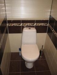 Ремонт и отделка туалета: дизайн туалета Цвет шоколадный.