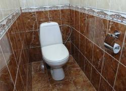 <p><em><strong>Ремонт и отделка туалета: wc дизайн санузла туалета - коричневый.</strong></em></p>