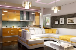 <p><em><strong>Кухня совмещенная с гостиной.&nbsp; Кухня-студия.</strong></em></p>
