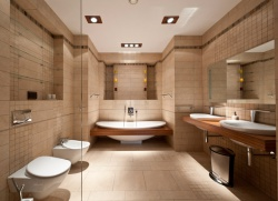 <p>Маленькая ванная комната совмещенная с туалетом</p>