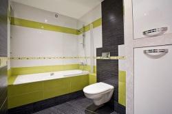 <p>Ремонт в ванной совмещенной с туалетом фото</p>