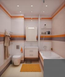 <p>Совмещенная ванная и туалет</p>